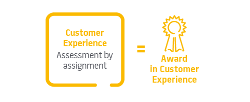 Customer Experience - CIM L4